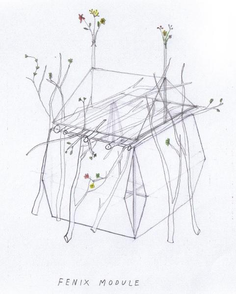 fenix module